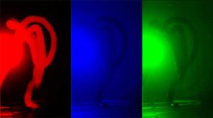 Рис 3 (б).Распределение яркостей по каналам цветности: красный (R), зеленый (G), синий (B).
