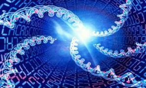 Генетический код