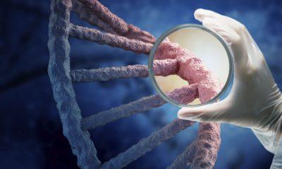 сиомия генетического кода
